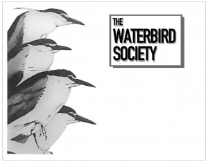 Waterbird Society Research Grant