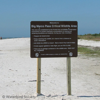 protected shorebird habitat
