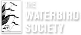 The Waterbird Society Logo